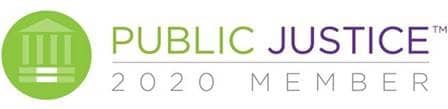 public justice 2020 member